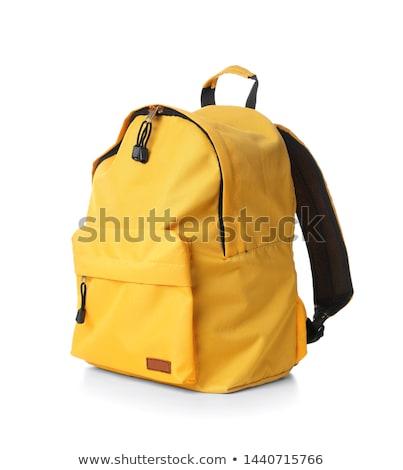 Backpacker reizen jonge tiener bagage avontuur Stockfoto © leeser