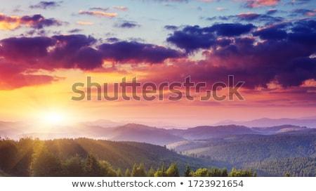 Panorama summer Mountain. Stock photo © BSANI