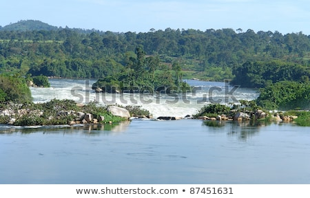 River Nile Scenery Near Jinja In Uganda Photo stock © PRILL