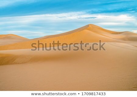 Duin zonsopgang woestijn mooie zon licht Stockfoto © meinzahn