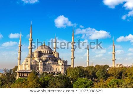 Стамбуле Blue Sky иллюстрация небе природы фон Сток-фото © cidepix