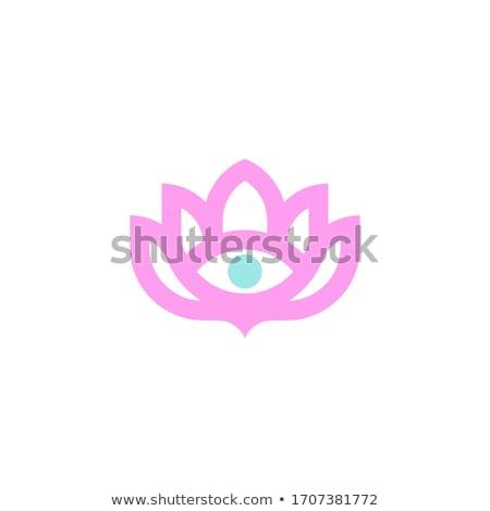 Előrelátás szem logo harmónia szimbólum művészet Stock fotó © shawlinmohd