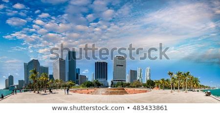 Stock fotó: Miami · városkép · sziluett · kulcs · fa · város