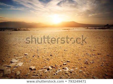Elhagyatott föld Stock fotó © givaga