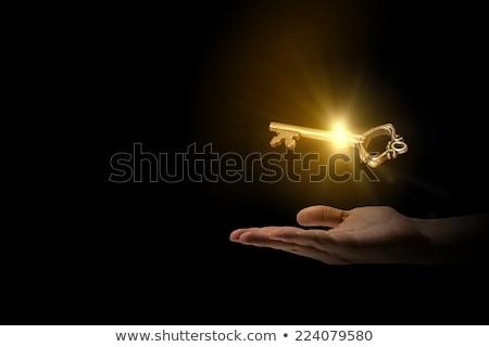 Kéz arany kulcs siker üzlet pénzügy Stock fotó © fantazista
