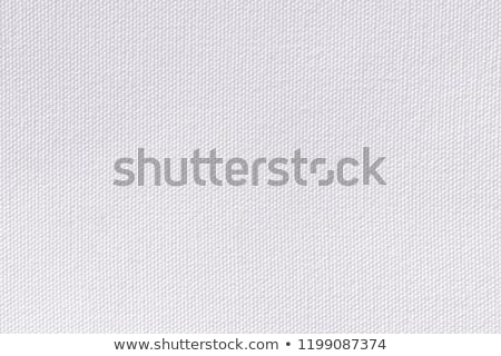 fabric texture silver stock photo © all32