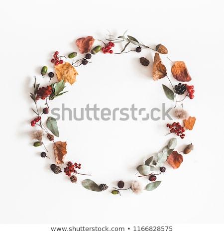 Bright autumn branches Stock photo © ptichka