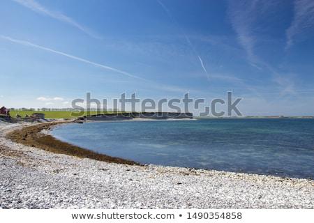 Danemark scène nature mer craie côte Photo stock © jeancliclac