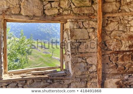 Fenêtres antique maison décoré fleurs nature Photo stock © olykaynen