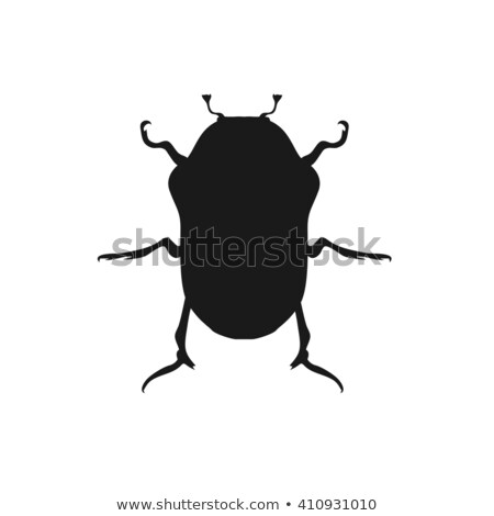 Protaetia May Bug Insect Design Flat Stock photo © robuart