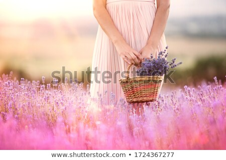 beautiful woman with busket at the summer field stock photo © pilgrimego