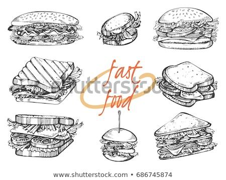 vector illustration of sandwiches stock photo © biv