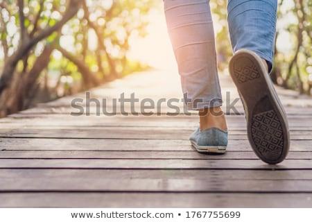 Small wooden bridge on white Stock photo © colematt