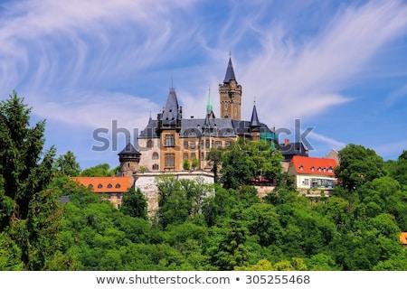 Wernigerode castle, Germany stock photo © borisb17