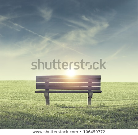 Lonely bench in the park Stock photo © AndreyKr