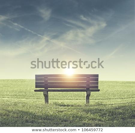 公園 · ベンチ · ツリー · 豊かな · いかがわしい · 夏 - ストックフォト © andreykr