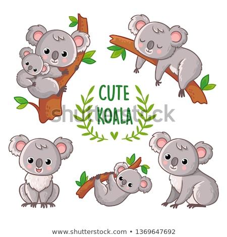 Cartoon cute baby koala sitting Stock photo © tigatelu