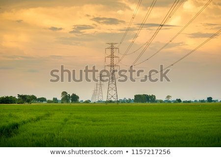 The electricity tower and sun Stock photo © Ansonstock