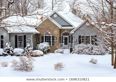 Noël · maison · 3d · illustration · design · neige · hiver - photo stock © photocreo