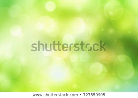 Fresco primavera bokeh abstrato grama verde blue sky Foto stock © dashapetrenko