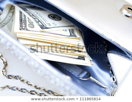 Dollar bills with luxury handbag Stock photo © illustrart