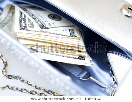 dollar bills with luxury handbag stock photo © illustrart