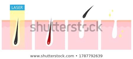 láb · nő · elektromos · borotva · nők · takarítás - stock fotó © olira