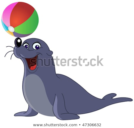ball game with the sea lion Stock photo © njaj
