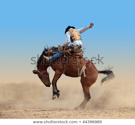 rodeo cowboy riding bucking horse bronco Stock photo © patrimonio