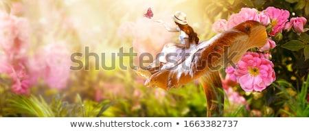 夢 美 幸せ ブルネット 少女 セクシー ストックフォト © blanaru