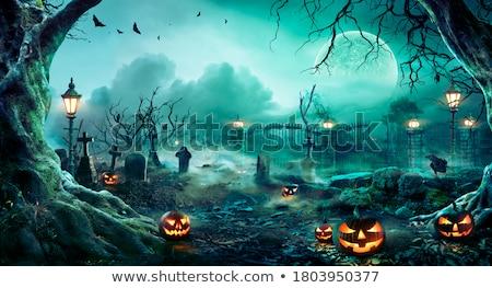 Halloween tökök hold fű buli arc Stock fotó © WaD