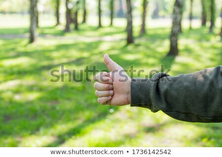 Remek ok jel zöld kéz kommunikáció Stock fotó © scheriton