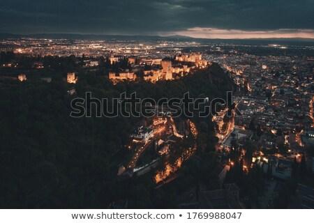 alhambra · palácio · pormenor · famoso · Granada · Espanha - foto stock © procy