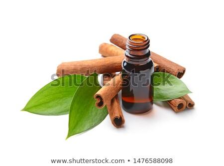 motorolie · fles · geïsoleerd · witte · industrie · vloeibare - stockfoto © shutswis