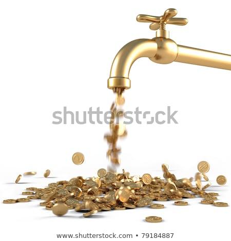 иллюстрация монетами падение водопроводной бизнеса Сток-фото © dacasdo