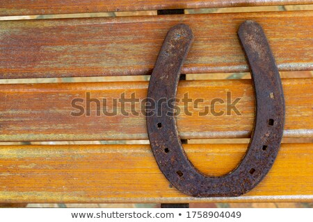 Horseshoe orange mur bon Photo stock © lunamarina