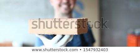Builder holding brick Stock photo © photography33