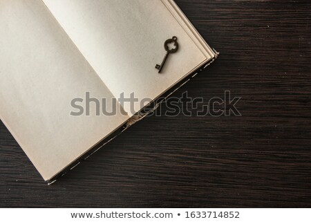 Old open book and rusty key Stock photo © stevanovicigor