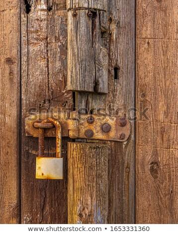Old wooden split door, England Stock photo © jayfish