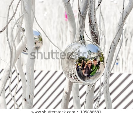 white painted branches give a harmonic background with chrismas stock photo © meinzahn