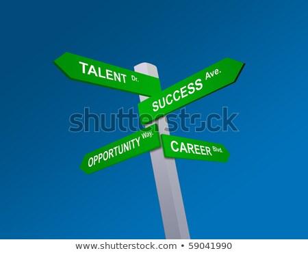 Talent wegwijzer vector business weg Blauw Stockfoto © burakowski