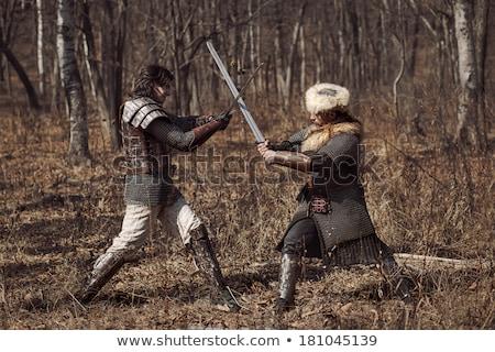 puce · épée · chevalier · moyen · Âge · main · noir - photo stock © sibrikov