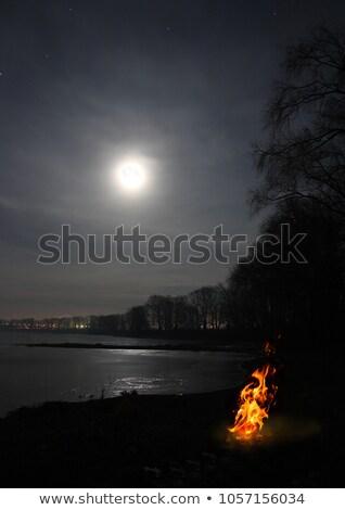 Máglya láng hold tó éjszaka tájkép Stock fotó © Mikko