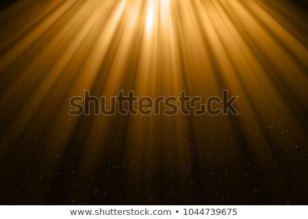 Light Rays And Light Dust Stock photo © derocz