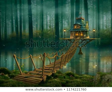 Fairy House Stock photo © lenm