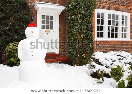 Bonhomme de neige maison permanent texture vert hiver Photo stock © tamasvargyasi
