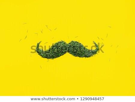 Groene snor snor witte schaduw symbool Stockfoto © Lightsource