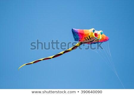 Flying Fish on string Stock photo © xochicalco