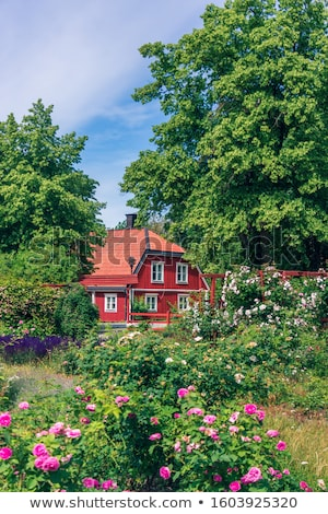 Traditional Swedish wooden fence Stock photo © master1305