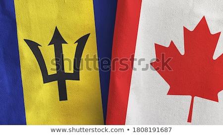 Kanada Barbados bayraklar bilmece yalıtılmış beyaz Stok fotoğraf © Istanbul2009